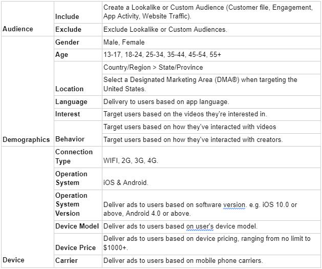 Target Audience Options Paid TikTok Advertising Blog Screenshot