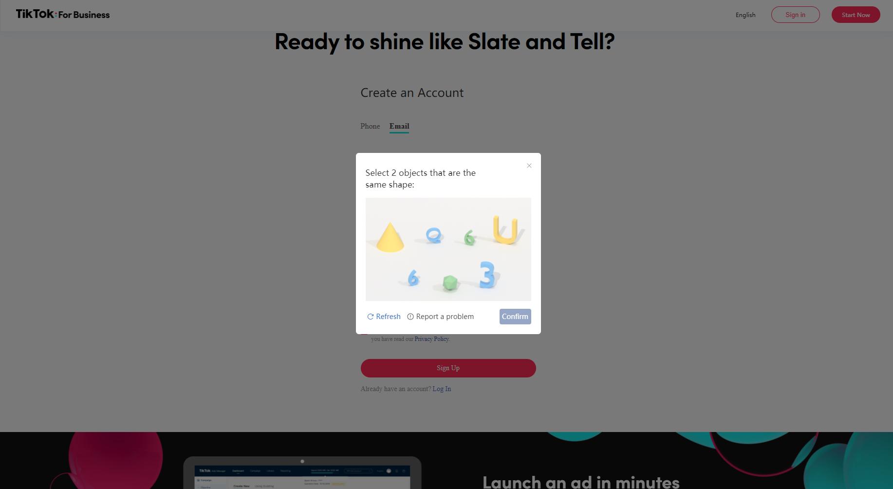 TikTok For Business Security Test Screenshot