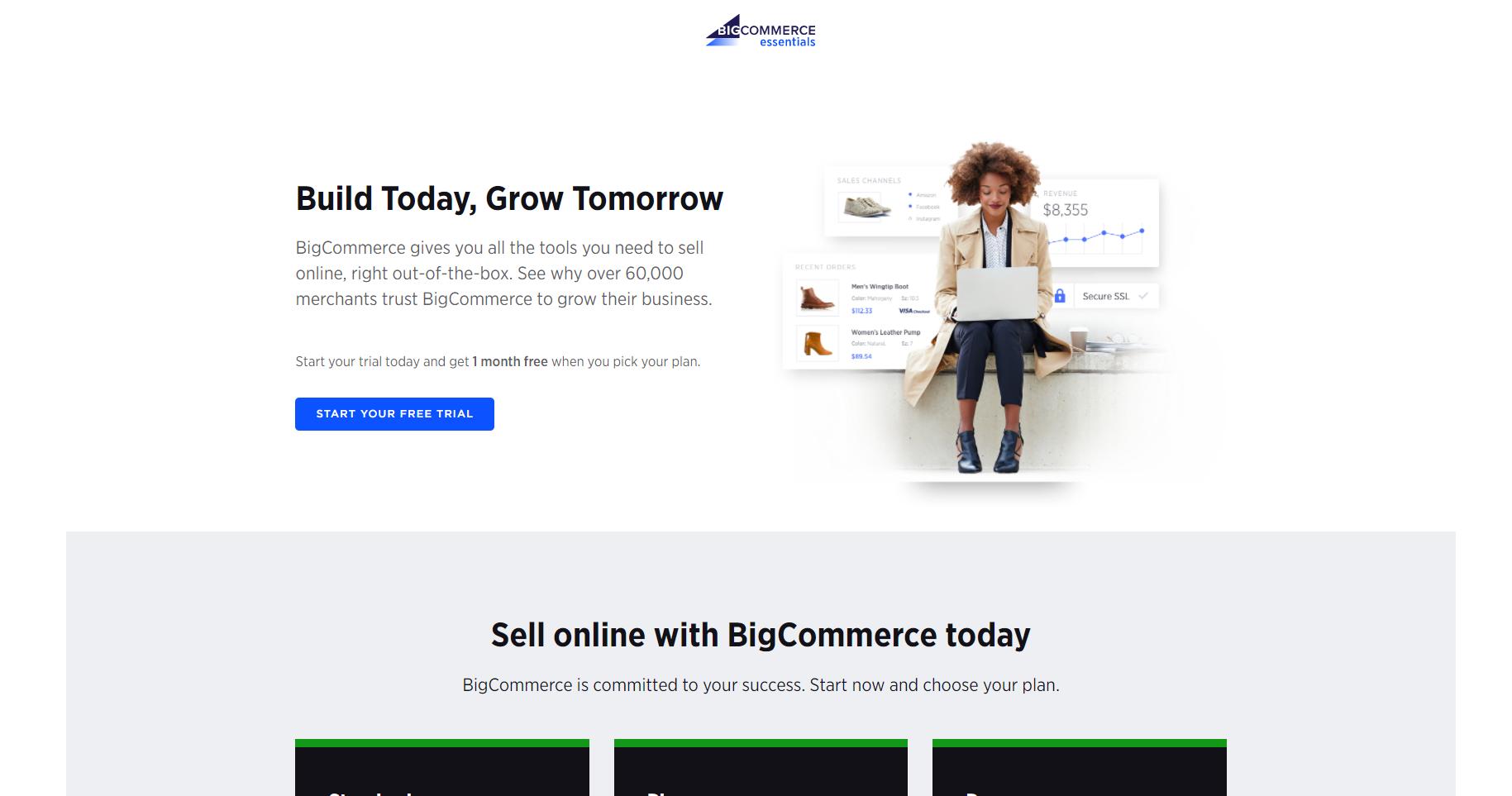 eCommerce software and marketing Big Commerce screenshot